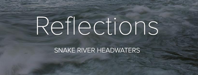 Snake River Reflections