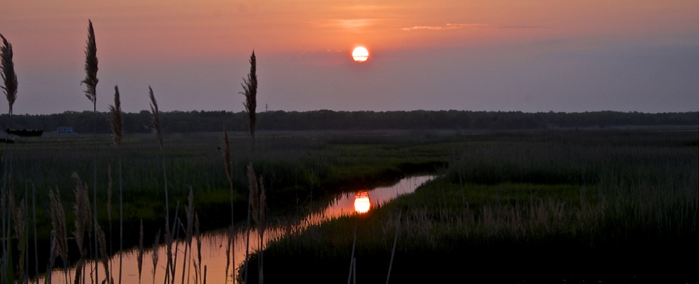Beauitful peach sunset shot taken over watery wetland